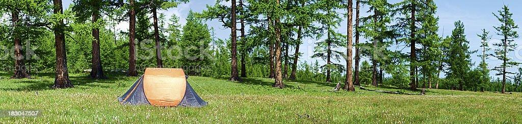 Campsite panorama - tent, meadow, trees 64MPix XXXXL size royalty-free stock photo