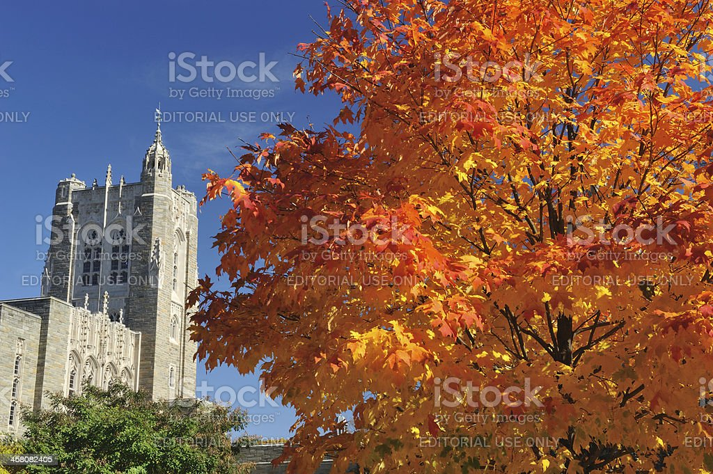 Campus of Princeton University stock photo