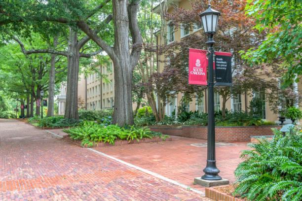 Campus Walkway and School Banner at University of South Carolina stock photo