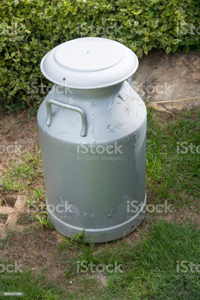 Can container for milk stock photo