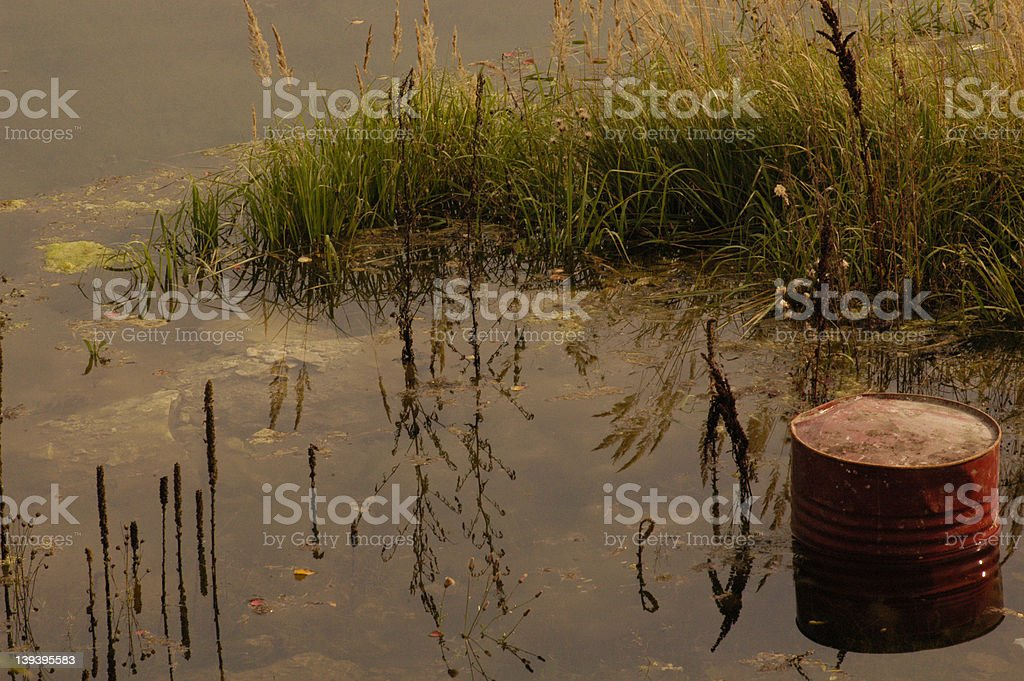 Can in the lake royalty-free stock photo