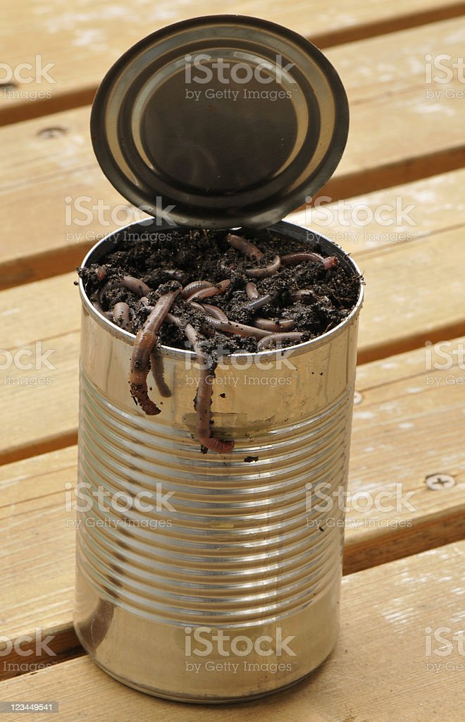 Can of Worms Too stock photo