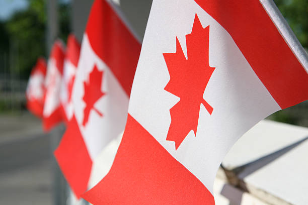 canada day flags - canada day stock pictures, royalty-free photos & images