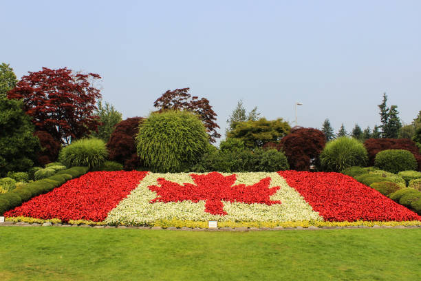 Canada Flag Flower Bed Canada Flag Flower Bed canada day photos stock pictures, royalty-free photos & images