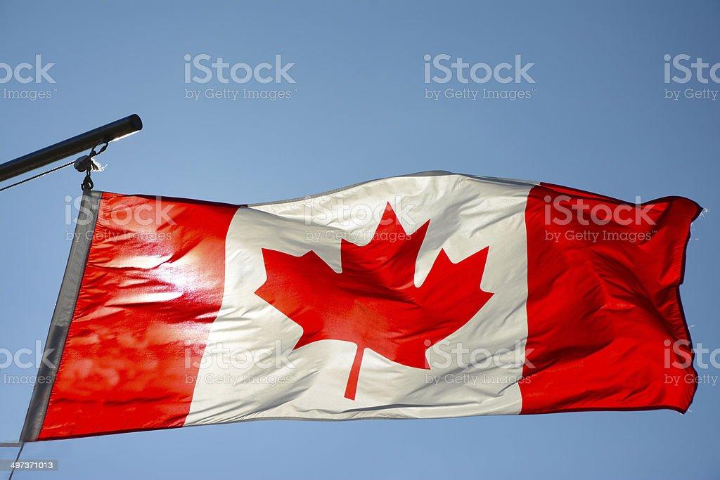 Bandeira do Canadá no vento - foto de acervo