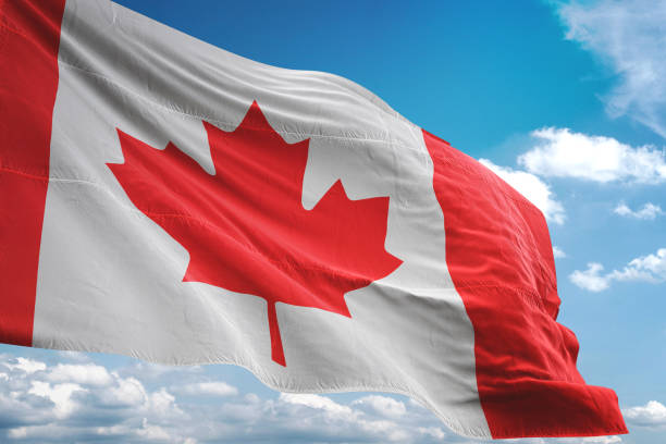 Canada flag waving cloudy sky background Canada flag waving cloudy sky background realistic 3d illustration canada flag photos stock pictures, royalty-free photos & images