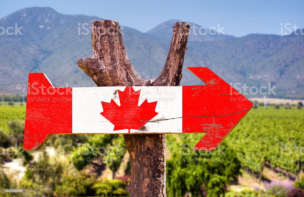 Canada Flag wooden sign with winery background stock photo