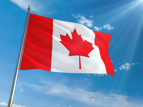 Canada National Flag Waving on pole against sunny blue sky background. High Definition Canada National Flag Waving on pole against sunny blue sky background. High Definition canada flag photos stock pictures, royalty-free photos & images