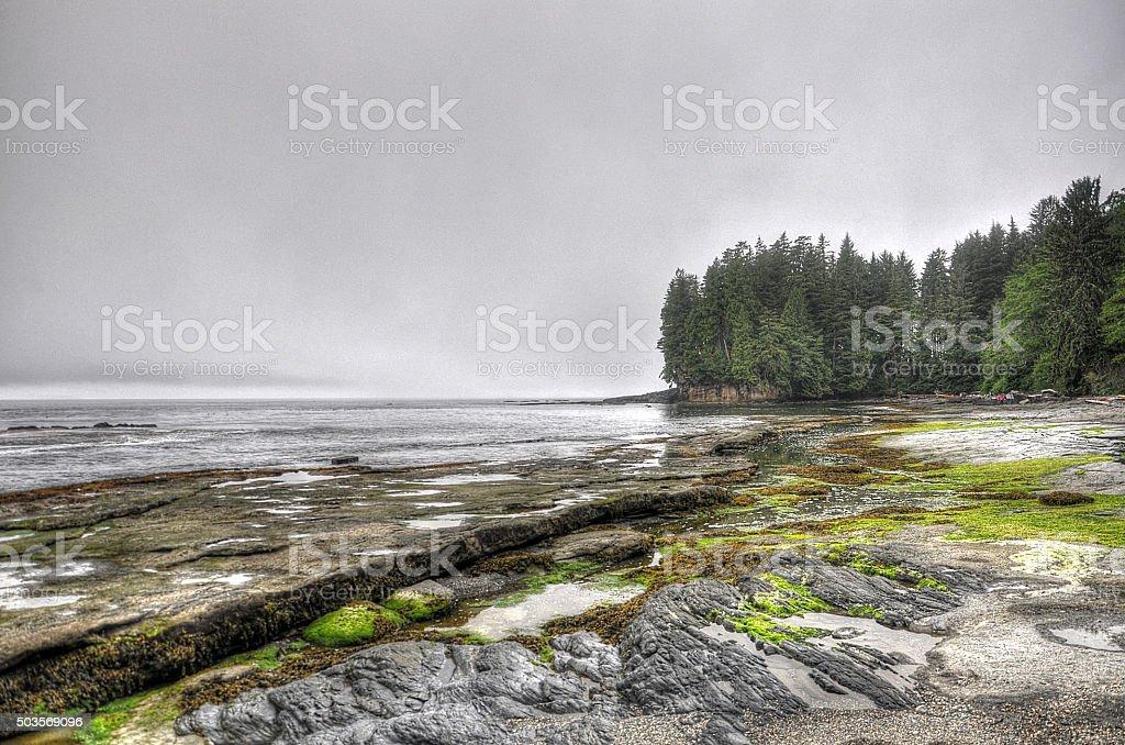 Canada Nature Collection - British Columbia - Vancouver Island stock photo