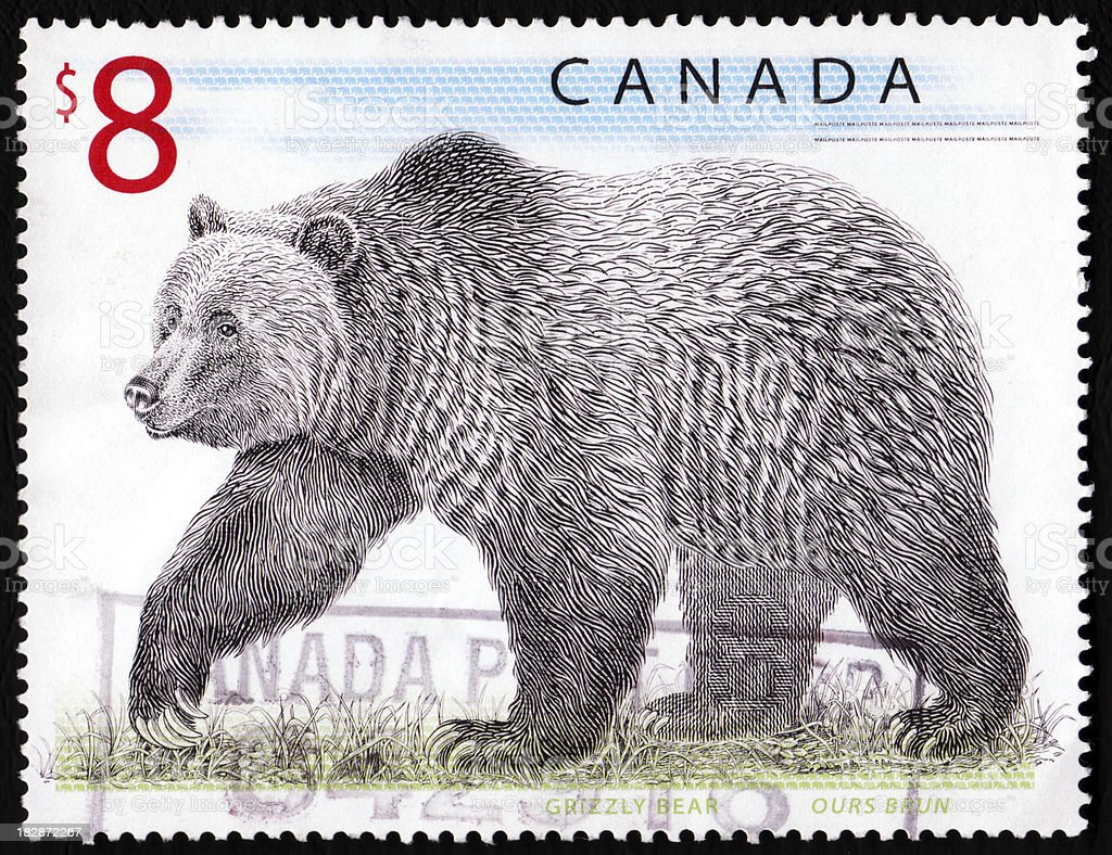 Canada stamp - grizzly bear stock photo