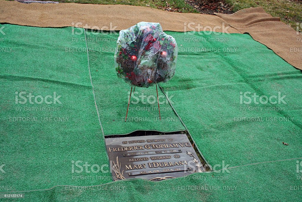 Canada: Topham Memorial Unveiling stock photo