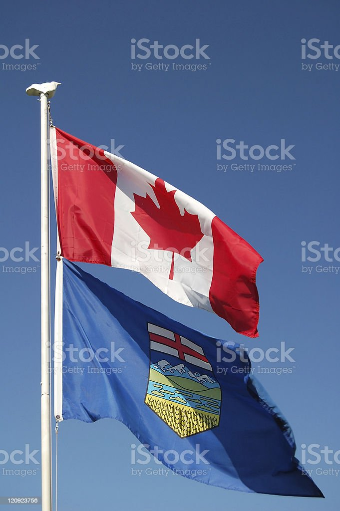 Canadian and Alberta Flags royalty-free stock photo