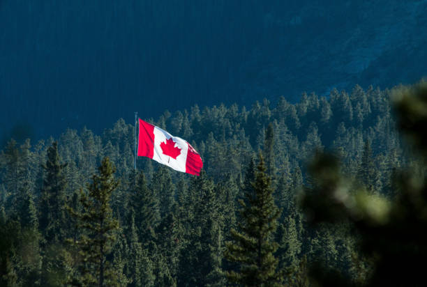 Canadian flag flies over forest Canmore Nordic Centre Provincial Park canada flag photos stock pictures, royalty-free photos & images