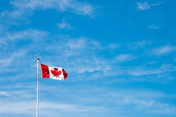 canadian flag flying in the wind - canada day stock pictures, royalty-free photos & images