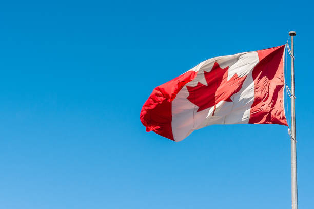 Canadian Flag in the Wind Canadian flag blowing in the wind canada flag photos stock pictures, royalty-free photos & images