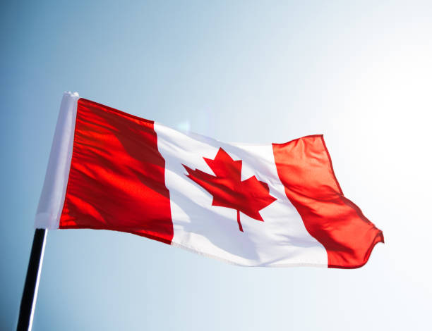 Canadian flag waving  against clear blue sky Canadian flag waving  against clear blue sky canada flag photos stock pictures, royalty-free photos & images