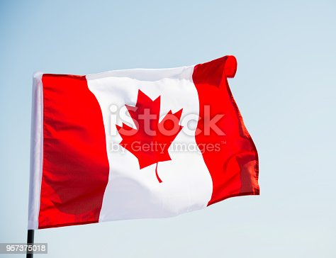 istock Canadian flag waving  against clear blue sky 957375018