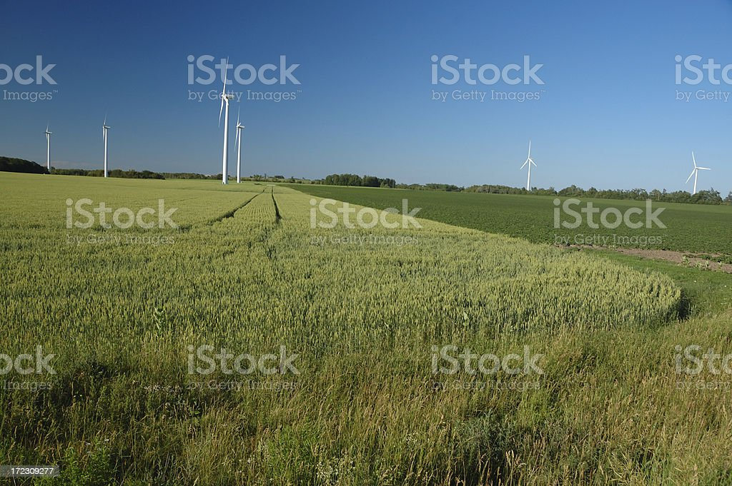 Canadian green wind farm in Ontario countryside stock photo