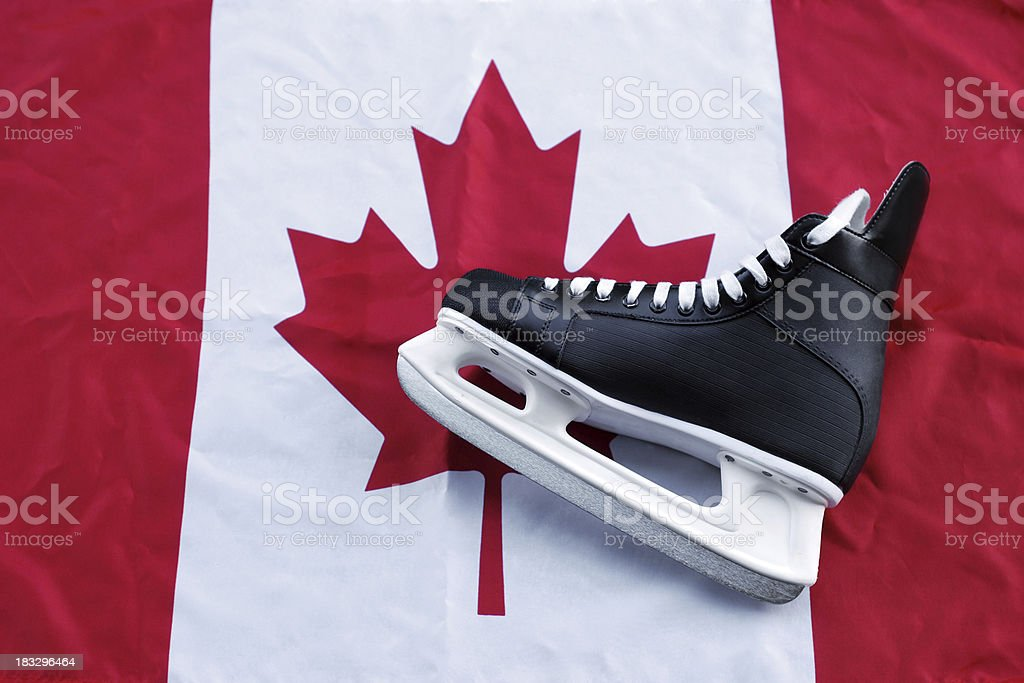 Canadian Hockey royalty-free stock photo