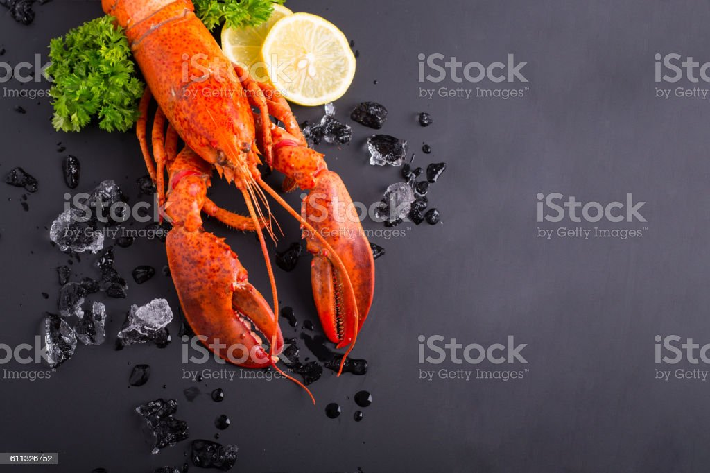 Canadian lobster food stock photo