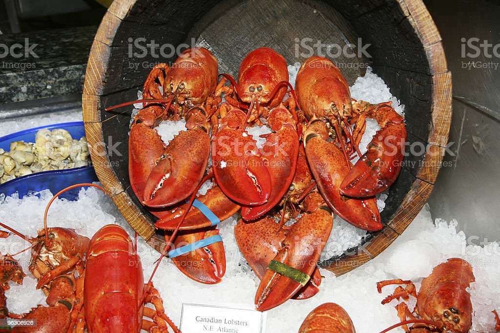 Canadian Lobsters stock photo