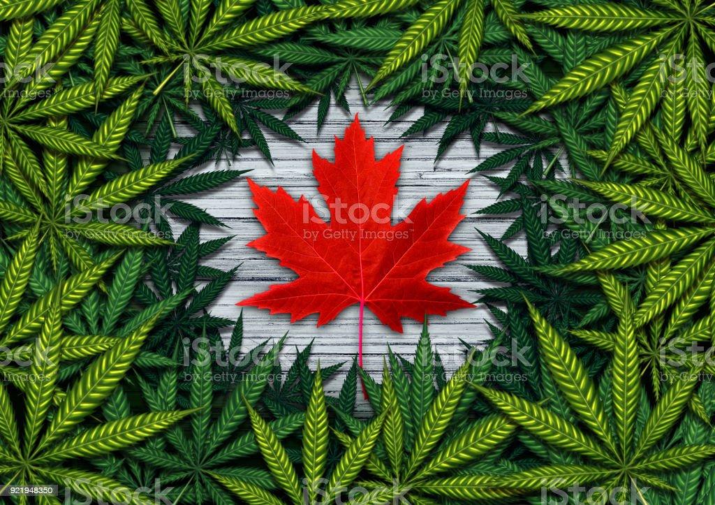 Canadian Marijuana stock photo