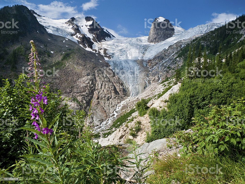 Canadian Mountain Landscape stock photo