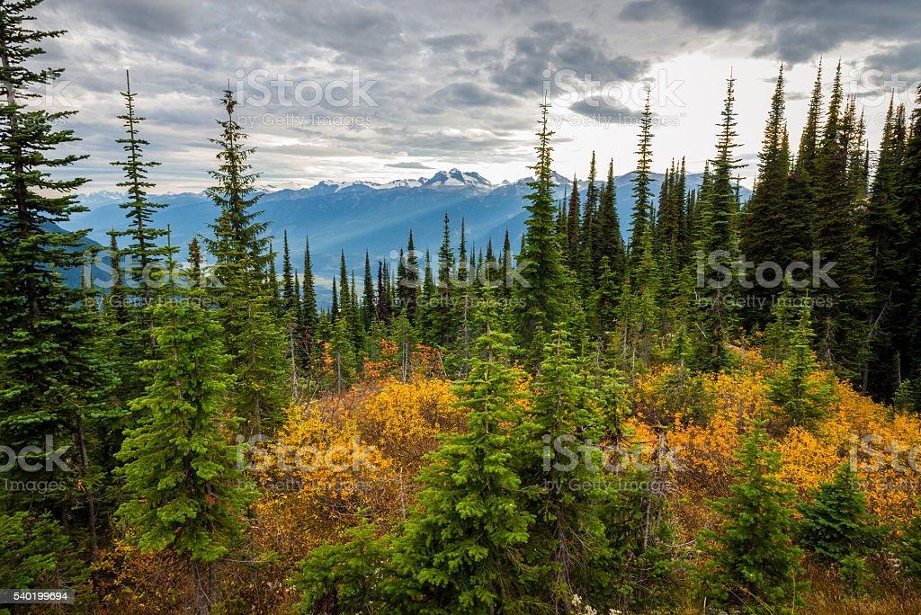 Canadian Mountains Landscape stock photo