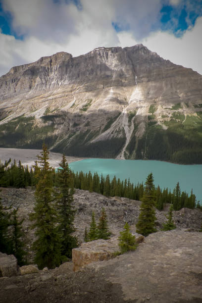 Canadian Rockies – Foto