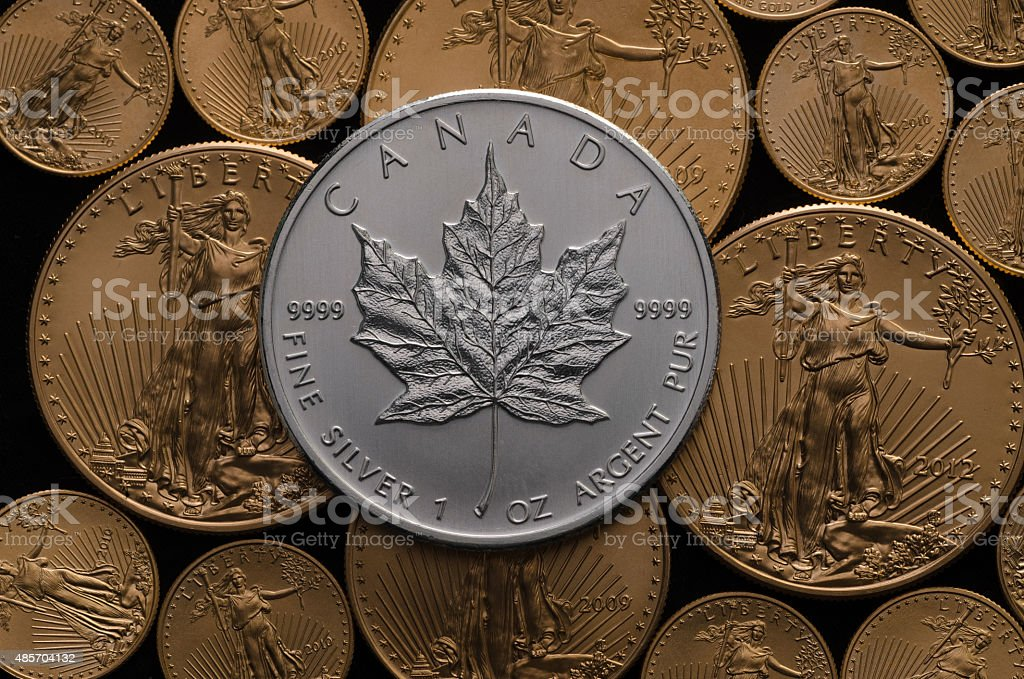 Canadian Silver Maple Coin over bed of Gold Eagle Coins stock photo