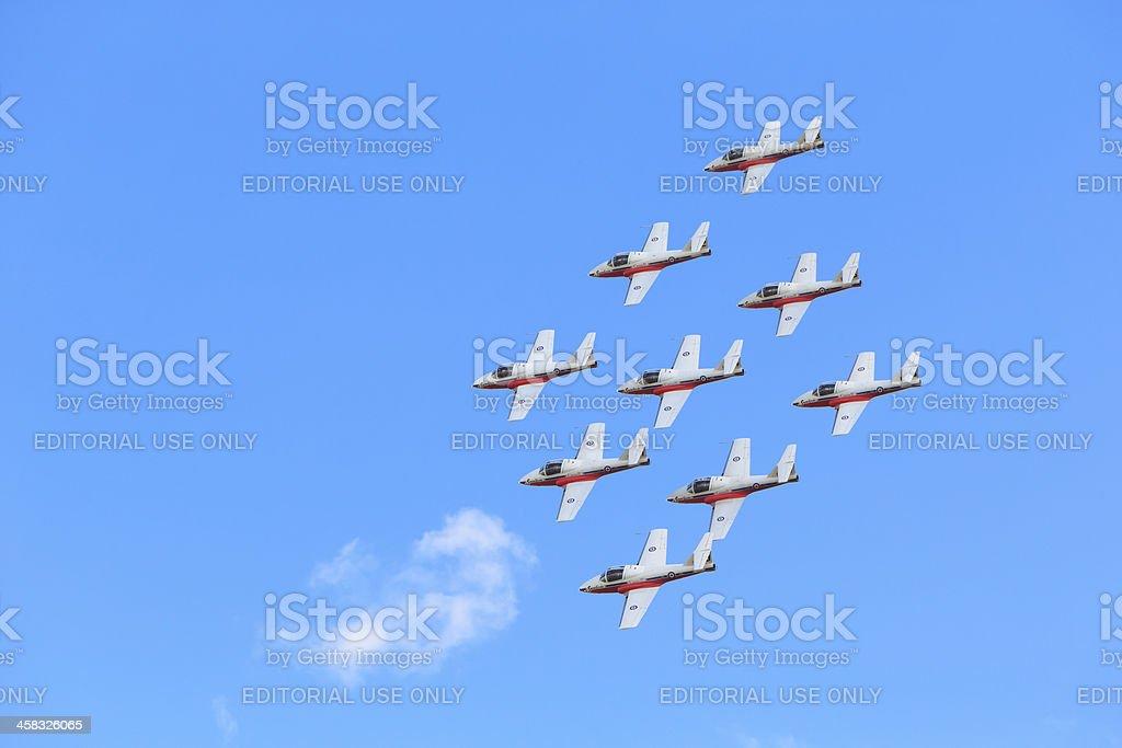 Canadian Snowbirds Show stock photo