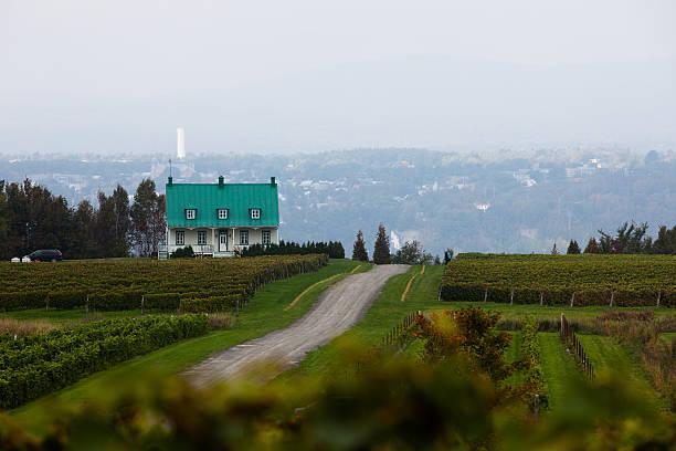 Canadian vignobles - Photo