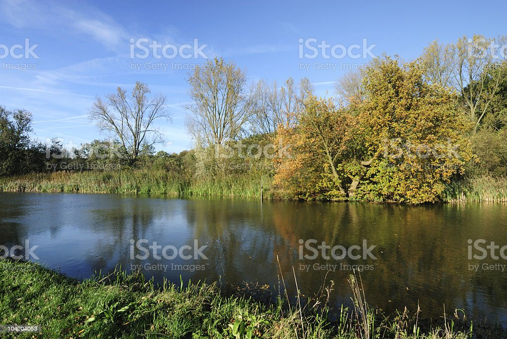 Canal and trees during autumn in the Netherlands royalty-free stock photo