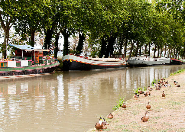 Canal Prunkschiffe – Foto