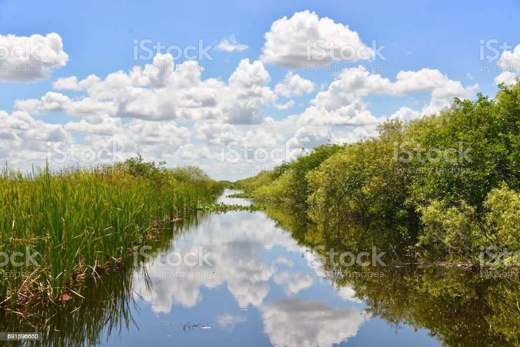Canal, Everglades stock photo