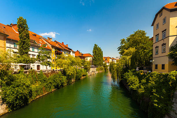 Canal in Ljubljana, Slovenia View of the canal in Ljubljana, Slovenia lined with trees and buildings. ljubljana stock pictures, royalty-free photos & images