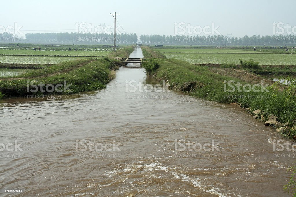canal in the fields royalty-free stock photo