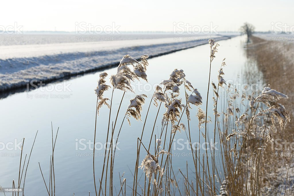 Canal through a snowy countryside royalty-free stock photo