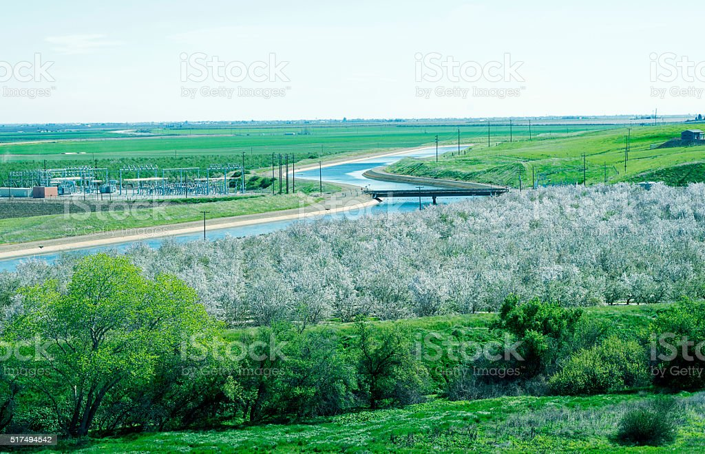 Canal through agricultural area and wetlands in central California stock photo