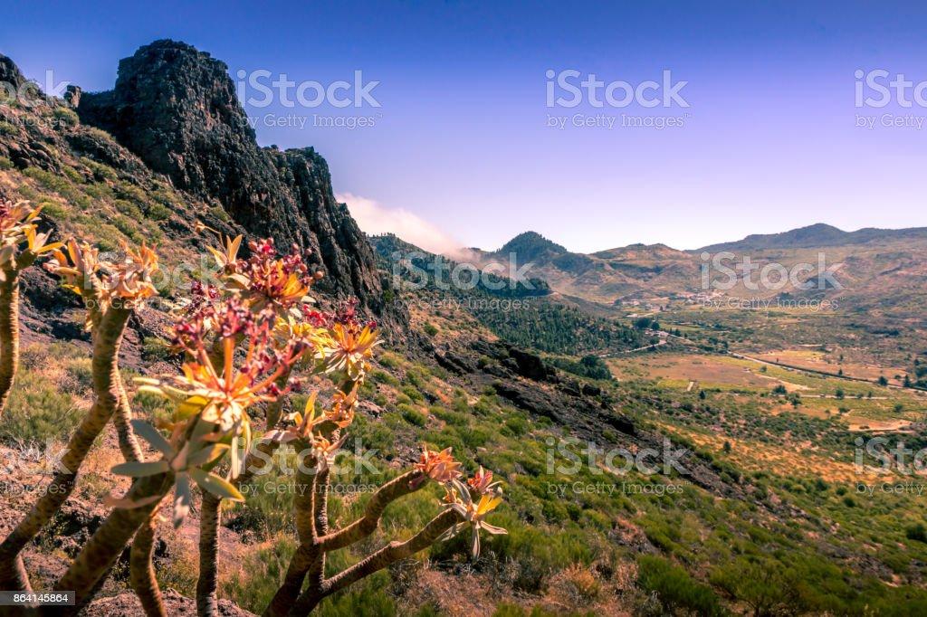 Canary island undulating landscape royalty-free stock photo
