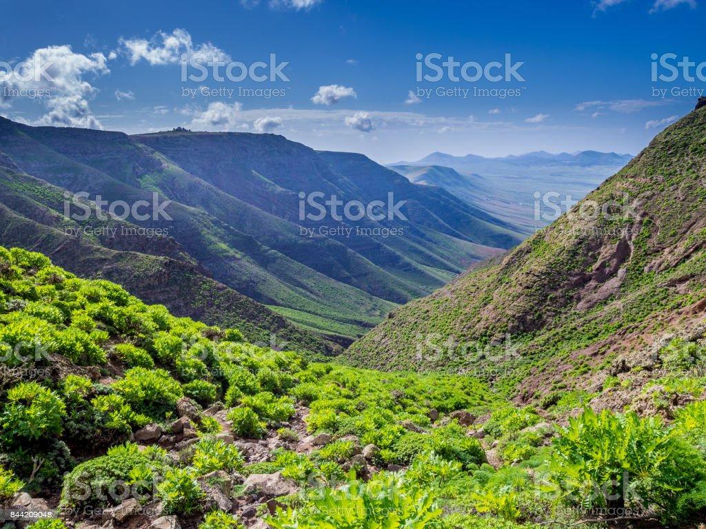 Canary Islands - Lanzarote - walk from Famara to Haria stock photo