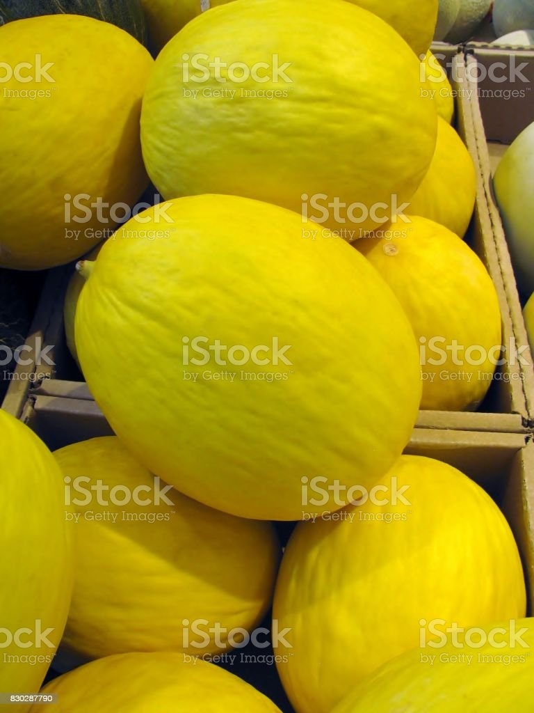 Canary melons, Cucumis melo inodorus, in a grocery store stock photo