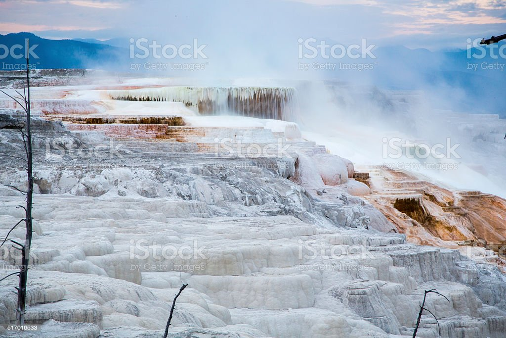 Canary Spring in Mammoth Hot Springs stock photo