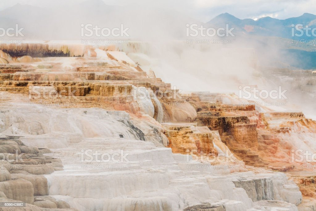 Canary Springs stock photo