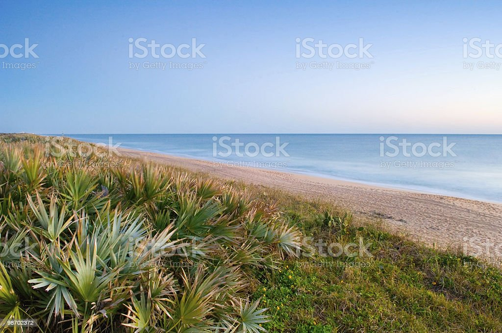 canaveral seashore background stock photo