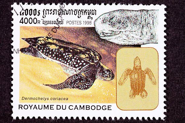 canceled cambodian postage stamp swimming leatherback sea turtle, dermochelys coriacea - leatherback mouth stockfoto's en -beelden