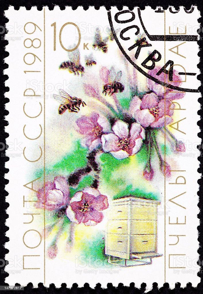 Annulée-soviétique Timbre-poste Cherry Blossom abeille Hive culture, de la pollinisation - Photo
