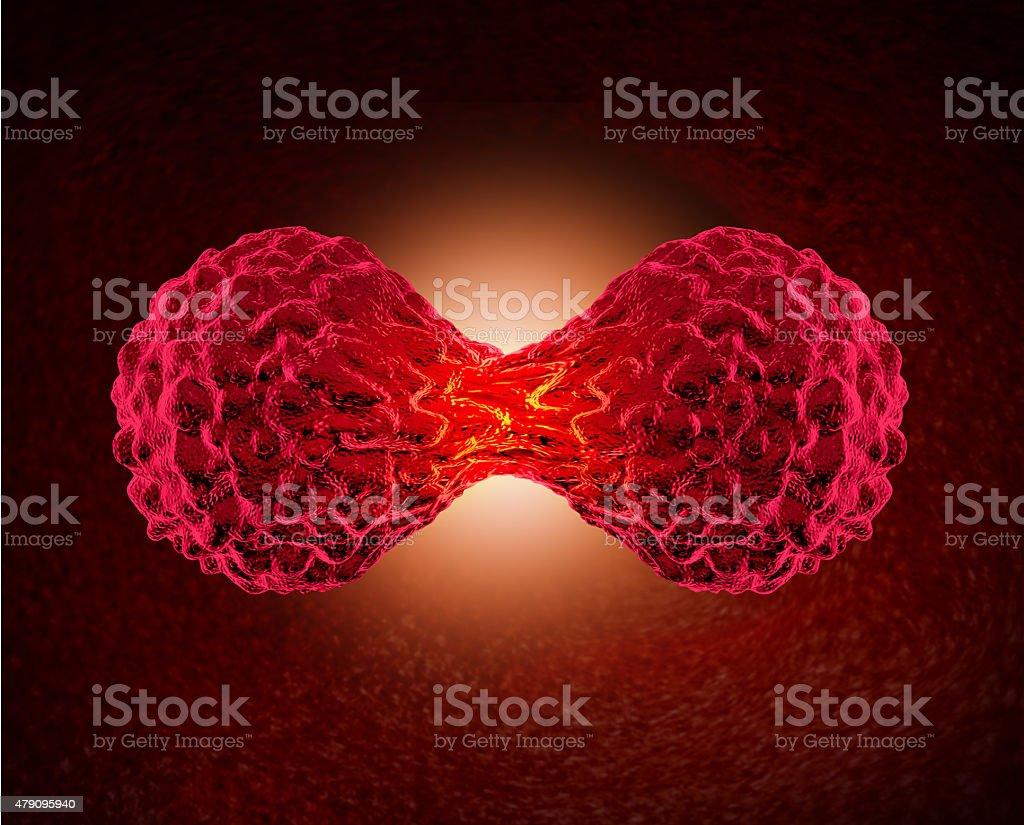 Cancer Cell Dividing stock photo