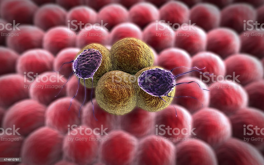 cancer cell, Lymphocytes stock photo