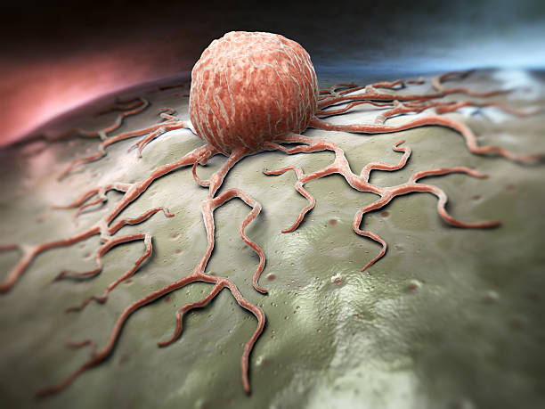 Cancer cell Close-up view of a  cancer cell high scale magnification stock pictures, royalty-free photos & images